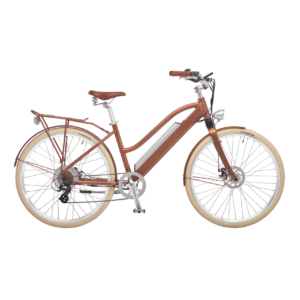 e-bike-schweiz-designer-ego-damen-hbrbesbgt-d_1 copy