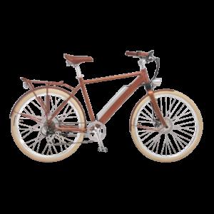 e-bike-schweiz-designer-ego-herren-hbrbesbgt-d copy
