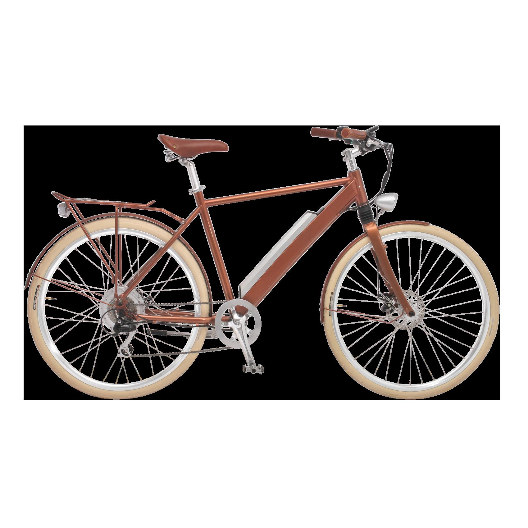 e bike c sar heckmotor 250w mit schutzblech gep cktr ger. Black Bedroom Furniture Sets. Home Design Ideas