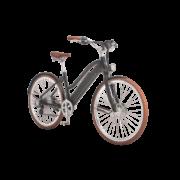 e-bikes-_zuerich-designer-ego-damen-hscbrsb-e_2 copy