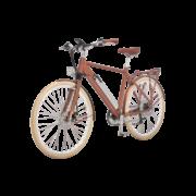 elektro-bikes-_zuerich-design-ego-herren-hbrbesbgt-b copy