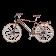 elektro-bikes-schweiz-design-ego-herren-hbrbesbgt-a copy