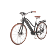 e-bike-schweiz-design-ego-damen-mscbrsbgt-b copy