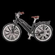 e-bike-schweiz-designer-ego-damen-hscscsbgt-a copy
