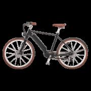 e-bike-schweiz-designer-ego-herren-mscbrsb-a copy