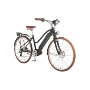 e-bikes-_zuerich-city-ego-damen-mscbrsbgt-e copy