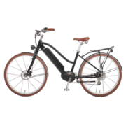 e-bikes-_zuerich-design-ego-damen-mscbrsbgt-a copy