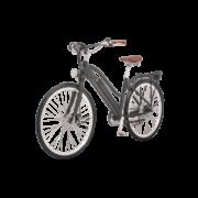 e-bikes-_zuerich-designer-ego-damen-hscscsbgt-b copy