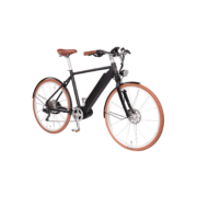 e-bikes-_zuerich-designer-ego-herren-mittel-scbr-sb-e copy