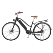 elektro-bike-schweiz-design-ego-damen-mscscsbgt-a copy