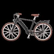 elektro-bike-schweiz-design-ego-herren-mscbrsbgt-a copy