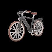 elektro-bike-zuerich-design-ego-herren-mscbrsbgt-b copy
