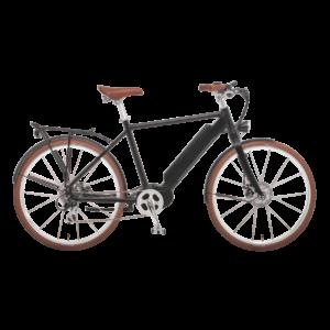 elektro-bikes-schweiz-design-ego-herren-mscbrsbgt-d copy